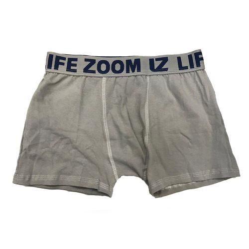 life-zoom-boxer